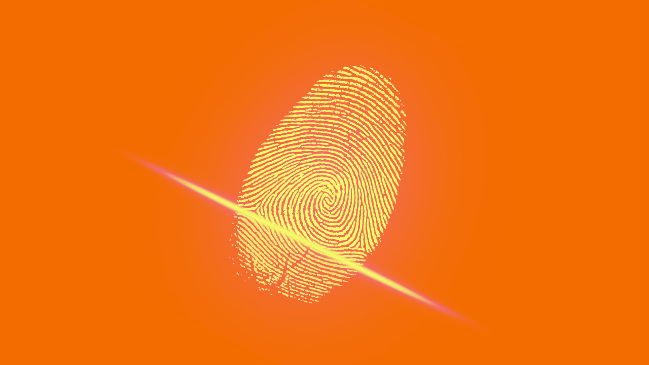 Orange-Fingerprint